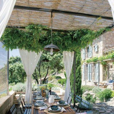 Cubrir terraza con techo de plantas