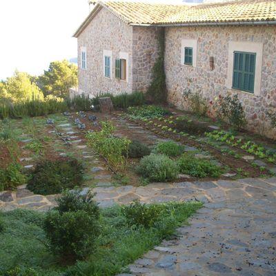 Diseñar y acondicionar el jardín