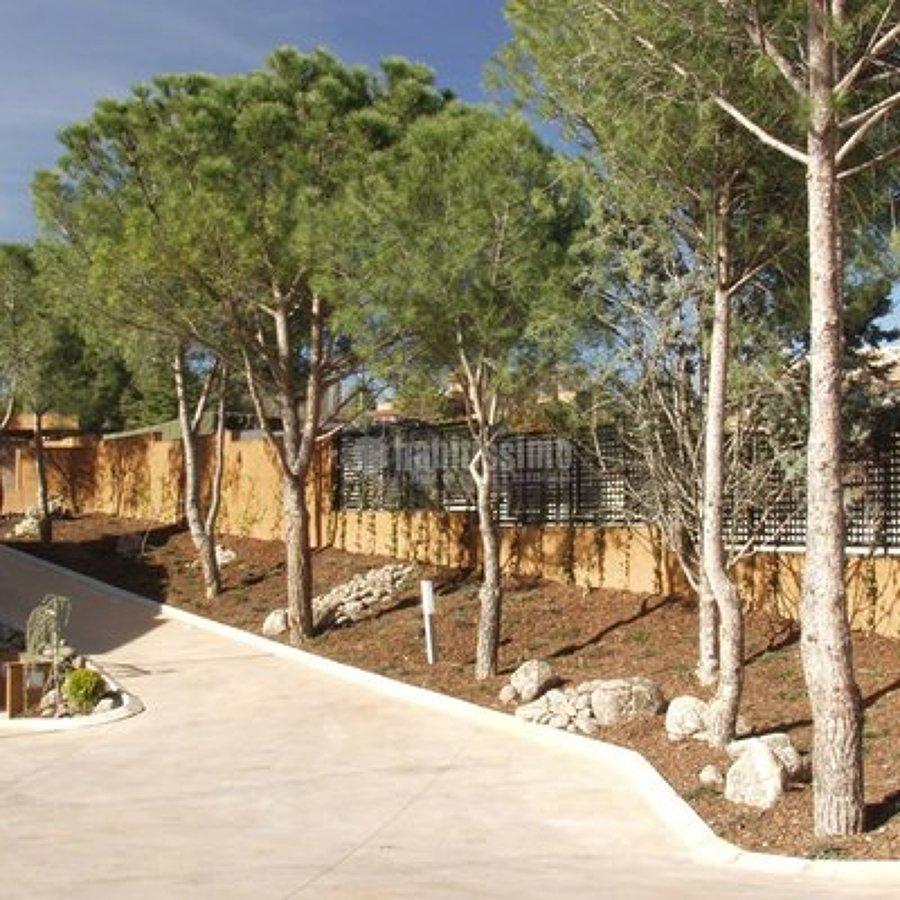 Presupuesto plantar rboles online habitissimo for Diseno de jardines en parcelas