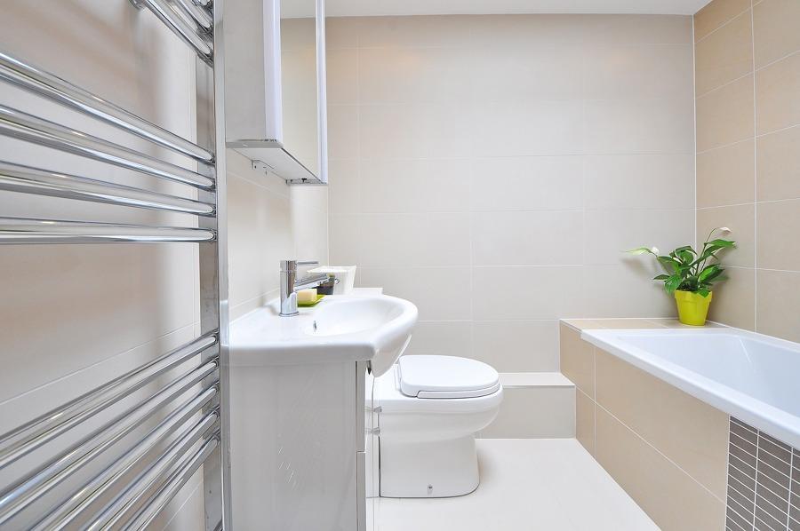 Puntos básicos y complementos para el baño