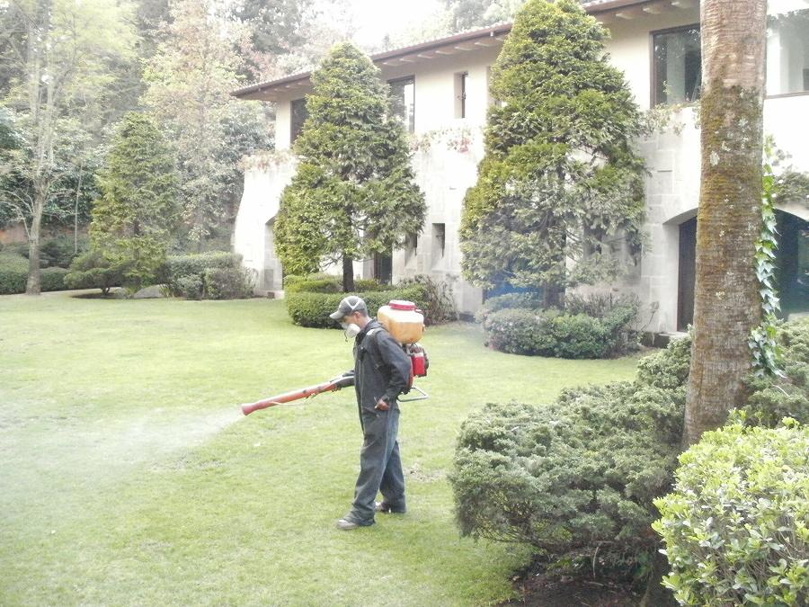 Control de plagas en jardines