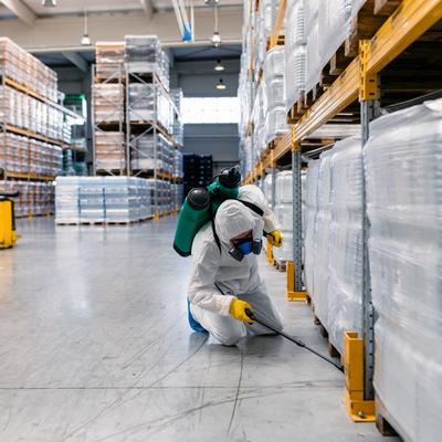 Control de plagas en locales comerciales