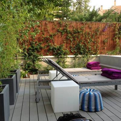 Asesoramiento de un jardinero en el diseño de un jardín
