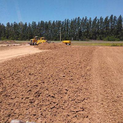 Excavación (vaciado del terreno)