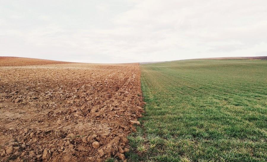 Qué significa desbrozar un terreno