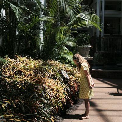 Hormigón estampado en jardines