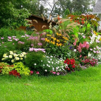 Plantar en el jardín