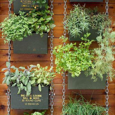 Ideas y precios para construir un jard n habitissimo for Jardines verticales precios
