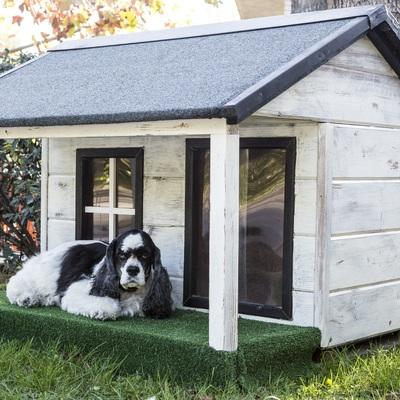 Casetas de jardín para un perro