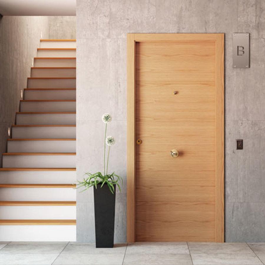 Presupuesto instalar puerta de seguridad online habitissimo for Puerta entrada vivienda
