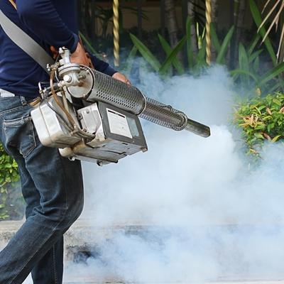 Control de plagas en jardín