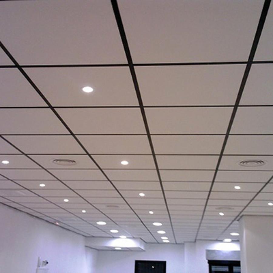 Presupuesto poner techo pladur online habitissimo for Decoracion de techos de salas