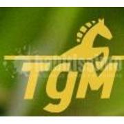 Logo Toldos Gómez
