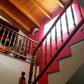 Pintura y rehabilitación de paredes y techos de madera