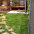 Jardineros, Riego Automático, Servicio Jardinería
