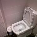 baño2,personalizado con inodoro damas senso compact