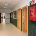 Colegio Primaria, Comedor y Gimnasio Teneria II en Pinto (Madrid)