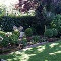 Diseño de jardín particular 2