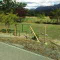 Puerta de jardin