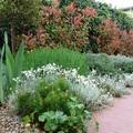 Jardín_El Boalo