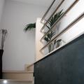 escalera , baranda y pintura