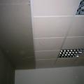 Falso techo de escayola aligerada.
