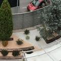diseño jardin sostenible blanco/salmón