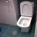 inodoro damas senso compact en baño de diseño