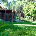 Jardín de chalé en Ávila