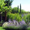 Jardín de estilo toscano