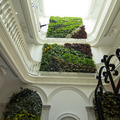 Jardín vertical Hotel Turístico El Armador