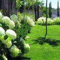 Mezcla de texturas en colores blancos y morados, elegancia y sosiego