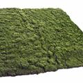 Musgo Artificial para Jardines Verticales