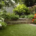 jardin 14