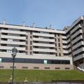 Reposición de plaquetas en Montecerrao
