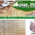 PAGINA WEB WWW.ADIREYCO.COM