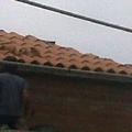 PANTEON CEMENTERIO DE GIJON