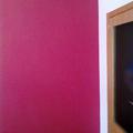 Pintura  del salon