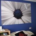 Pintura habitación invitados