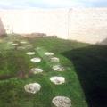Plantacion de tepe en Illescas