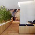Proyectos de iluminación retail. (Masdeu Studio Design)