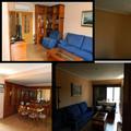 Reforma de salon,tarimas,pladur,pintura lisa,carpinterias