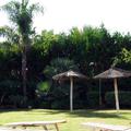 Sol y jardin.