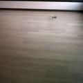 suelo interior parquet,planta,1ra. obra nueva