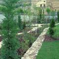 jardin paisajista
