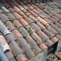 tejado viejo