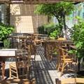 Terraza bar-restaurante El Gallito