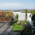 Terraza y pequeño Jardín en Benidorm