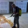 Trabajos relizados en teatro en vitoria desbaste y tratamiento polilla y termitas