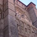 Tratamiento anti palomas (Catedral de Avila)